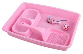 Kitty Starter Kit-Roze