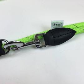 Dogogo verstelbare hondenlijn 12 mm, groen