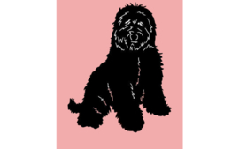 dutch Hero's Vet Bed LabraDoodle roze, anti-slip