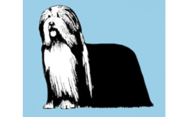 dutch Hero's Vet Bed Bearded Collie (blauw), anti-slip