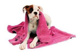 Show Tech+ Microfibre Handdoek met Broderie 56x90cm Handdoek Voor Honden En Katten