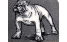 dutch Hero's Vet Bed Bulldog, anti-slip