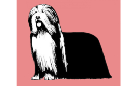 dutch Hero's Vet Bed Bearded Collie (roze), anti-slip