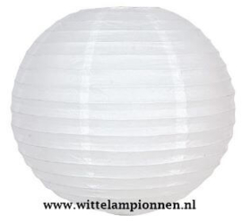 Witte lampionnen 40 cm