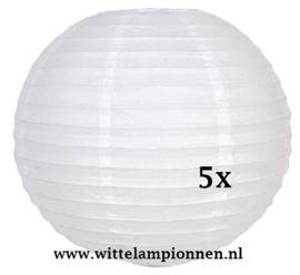 Witte lampionnen 40 cm - 5 stuks