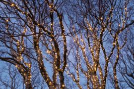 Professionele koppelbare kerstverlichting voor buiten - 100 lampjes