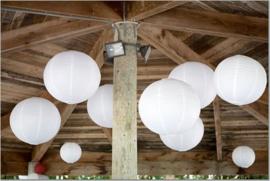 Lampion pakket 60 witte lampionnen