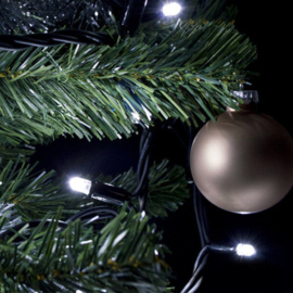 Professionele witte kerstverlichting voor buiten - 100 lampjes