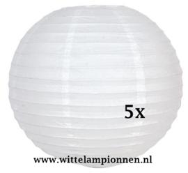 Witte lampionnen 65 cm - 5 stuks