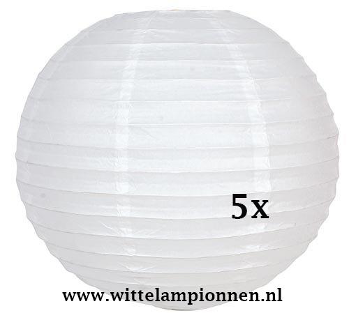 Witte lampionnen 75 cm - 5 stuks
