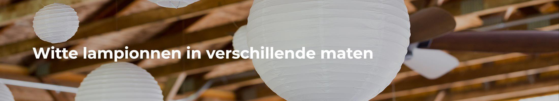 Witte lampionnen kopen