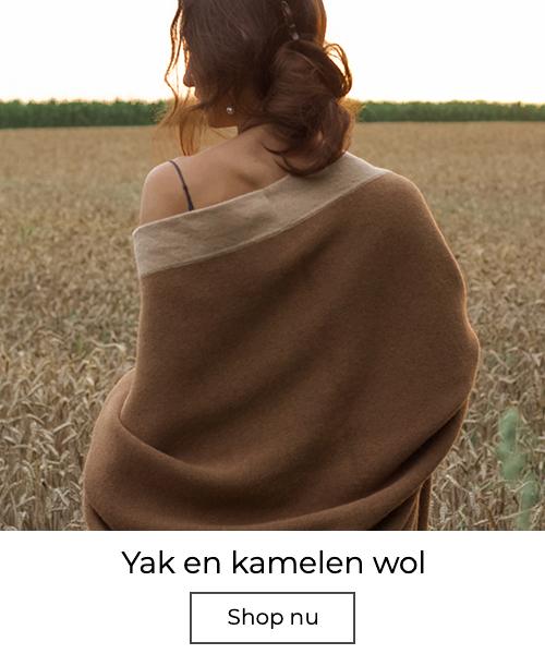 Camel wol
