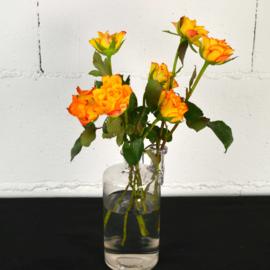 Glazen laboratorium vaas