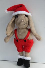 Snuffy het Kerstkonijn