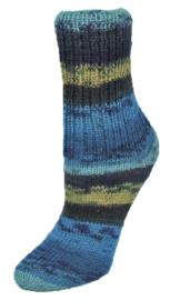 Rellana Flotte Socke Winterwald 1255