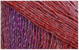 Schachemayr: Colorata 081