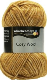 Schachenmayr Cosy Wool 22