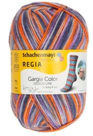 Regia Cargio Color 3861