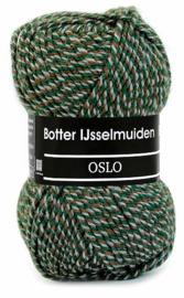 Botter IJsselmuiden - Oslo 180 Groen/Bruin/Grijs