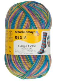 Regia Cargio Color 3860