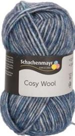 Schachenmayr Cosy Wool 52