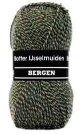 Botter IJsselmuiden - Bergen 185