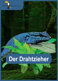 Opal Regenwald 16: kleur 9903