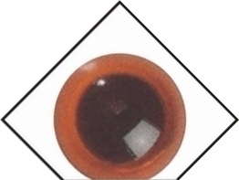 1 paar veiligheidsogen 20 mm Amber transparant