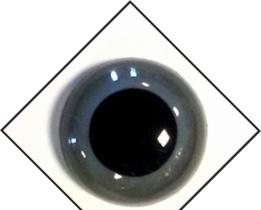 1 paar veiligheidsogen 10 mm Grijs