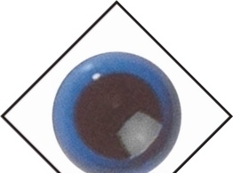 1 paar veiligheidsogen Blauw transparant 06 mm