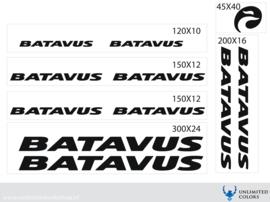 Batavus stickers
