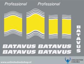 Batavus Professional 3