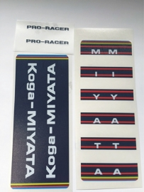 Koga Miyata pro racer