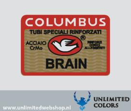 42. Columbus BRAIN