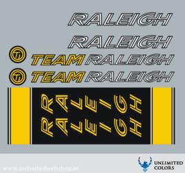 Team Raleigh