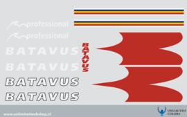 Batavus Professional 2