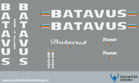 Batavus Course