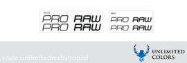 Pro Raw