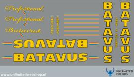 Batavus professional 4