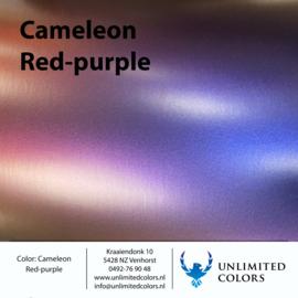 Kameleon rood/paars
