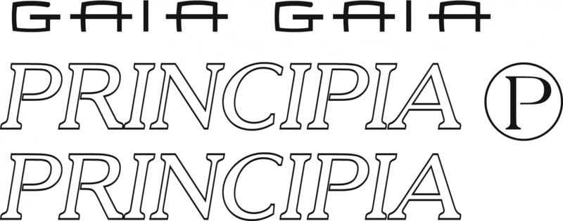 Principia Gaia