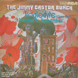 Jimmy Castor Bunch - Troglodyte (cave man)