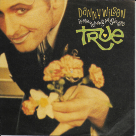 Danny Wilson - If everything you said was true
