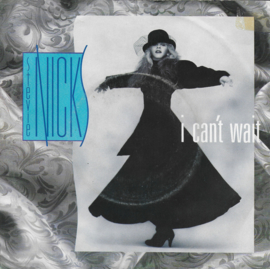 Stevie Nicks - I can't wait
