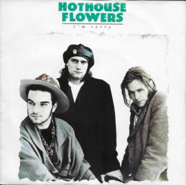 Hothouse Flowers - I'm sorry