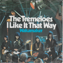 Tremeloes - I like it that way