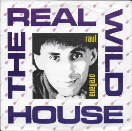 Raul Orellana - The real wild house
