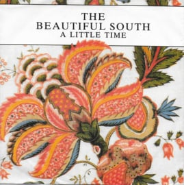 Beautiful South - A little time