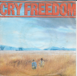 Cry Freedom - The funeral