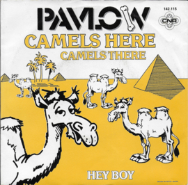 Pavlow - Camels here, camels there
